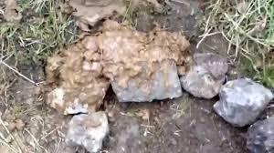 Terres Cuites De Raujolles by Construction D U0027un Four En Terre Cuite Youtube