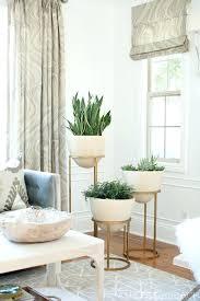 home decor with plants home decor plants living room modern living room plants house plant