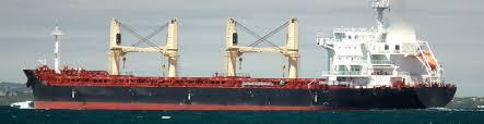 bureau vista buena vista shipping class marine assets transport energy