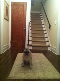 wood floor carpet srs carpet vidalondon