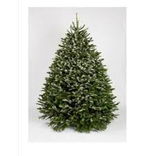Christmas Ornament Storage At Lowes by Shop Fresh Christmas Trees At Lowes Com