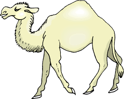 camel cartoon pictures free download clip art free clip art