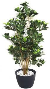 20cm artificial mini ficus plant in a ceramic vase green