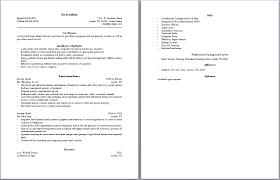 Security Engineer Resume Sample by Free Nurse Resume Templateguard Resume Security Guard Resumes