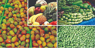 nutrisystem fast 5 vegetables nutrisystem on hsn