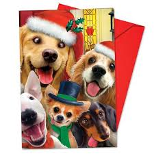 best christmas cards christmas cards 2017 compare buy save