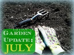 What Are The Gardening Zones - zone 8 ne texas vegetable garden update july