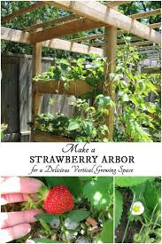 Diy Strawberry Planter by Strawberry Vertical Garden Zandalus Net