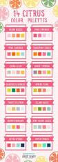 creative color palettes color palettes colors and your design