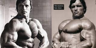 mammoth chest how schwarzenegger built the best chest in