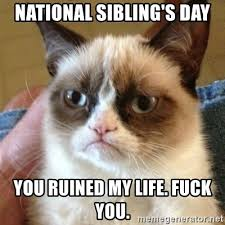 National Sibling Day Meme - national sibling s day you ruined my life fuck you grumpy cat
