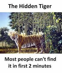 Tiger Meme - dopl3r com memes the hidden tiger most people cant find it in