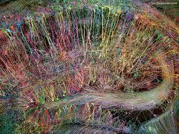 Ballard Design Art Greg Dunn Design Visual Art Neuroscience Art Gold Leaf Painting