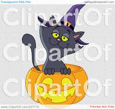 small halloween witch with no background royalty free rf clipart illustration of a happy black cat