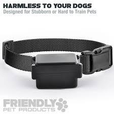 amazon com friendly pet products wireless dog fence with radio
