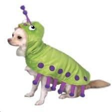 Extra Small Dog Halloween Costumes Zack Zoey Costumes Dogs Ebay