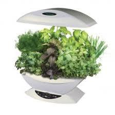 indoor herb garden kits to grow herbs indoors hgtv shining indoor garden kit herb kits to grow herbs indoors hgtv
