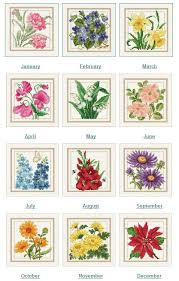 flower of the month best 25 month flowers ideas on birth flowers birth