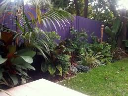 best 25 tropical lawn and garden ideas on pinterest landscape