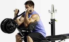 Powertec Weight Bench Powertec Home Gym Home Gym Equipment Fitness Equipment