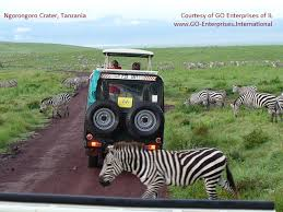 Eastern africa gt go enterprises