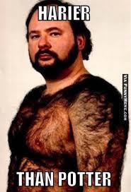 Hairy Men Meme - hairy memes image memes at relatably com