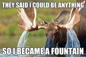 Moose Meme - they said i could be anything so i became a fountain moose