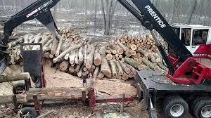large wood cutting saw