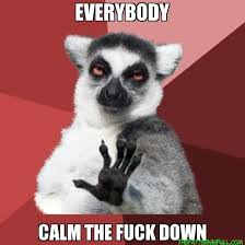 Calm The Fuck Down Meme - everybody calm the fuck down chill out lemur the pattern is full