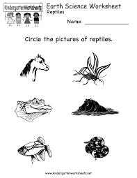 kindergarten worksheets science free worksheet ideas and on