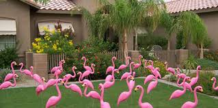 plastic flamingos pink yard flamingos yard flamingo lawn flamingos