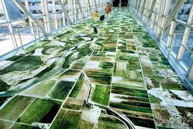 cool carpet unusual home design google earth carpets spot cool stuff design