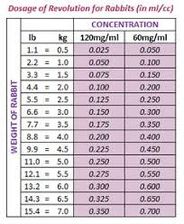 Kims Rabbit Hutch Breeding Genetic Color Calculator Kim U0027s Rabbit Hutch Holland