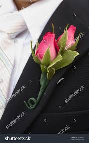 Rose Boutonniere Pink Rose Boutonniere Flower On Grooms Stock Photo 36744097