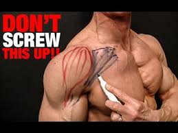 Chest And Shoulder - chest non responder solution pecs won t grow