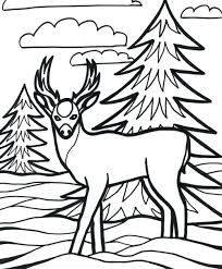 vector cartoon scared deer outlined coloring head book pages