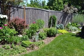 cozy design shrub garden design with top ten shrubs for ottawa