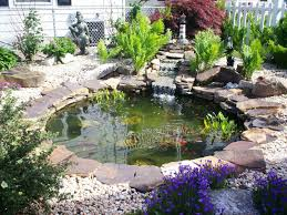 backyard with small waterfall and pond maintenance tips for