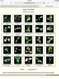 44 best gardening images on pinterest gardening gardening tips