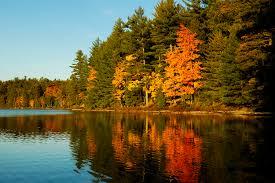 Fall Color Palette by Northwoods U2013 Fall U2013 Nature U0026 Human Photography