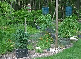 shade gardening viette u0027s views