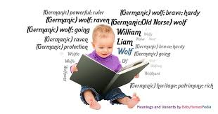 wolf meaning of wolf what does wolf