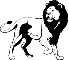 lion 1 black white line art coloring sheet colouring page