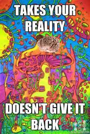 Psychedelic Meme - psychedelic scumbag memes quickmeme