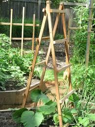 Bamboo Cucumber Trellis Trellises Tuteurs Jb Wood U0027n Craft