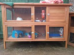 Guinea Pig Hutches And Runs For Sale Guinea Pig Hutch Tour August 2013 Youtube