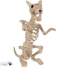Halloween Prop Store by Halloween Dog Cat Rat Bird Skeleton Decoration Animal Bones Prop