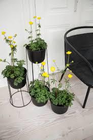 los patios menu 290 best menu images on pinterest chairs colors and home decor