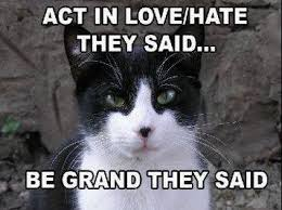 Love Hate Meme - a laugh on tuesday love hate nenagh silent film festival