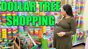 dollar tree shopping